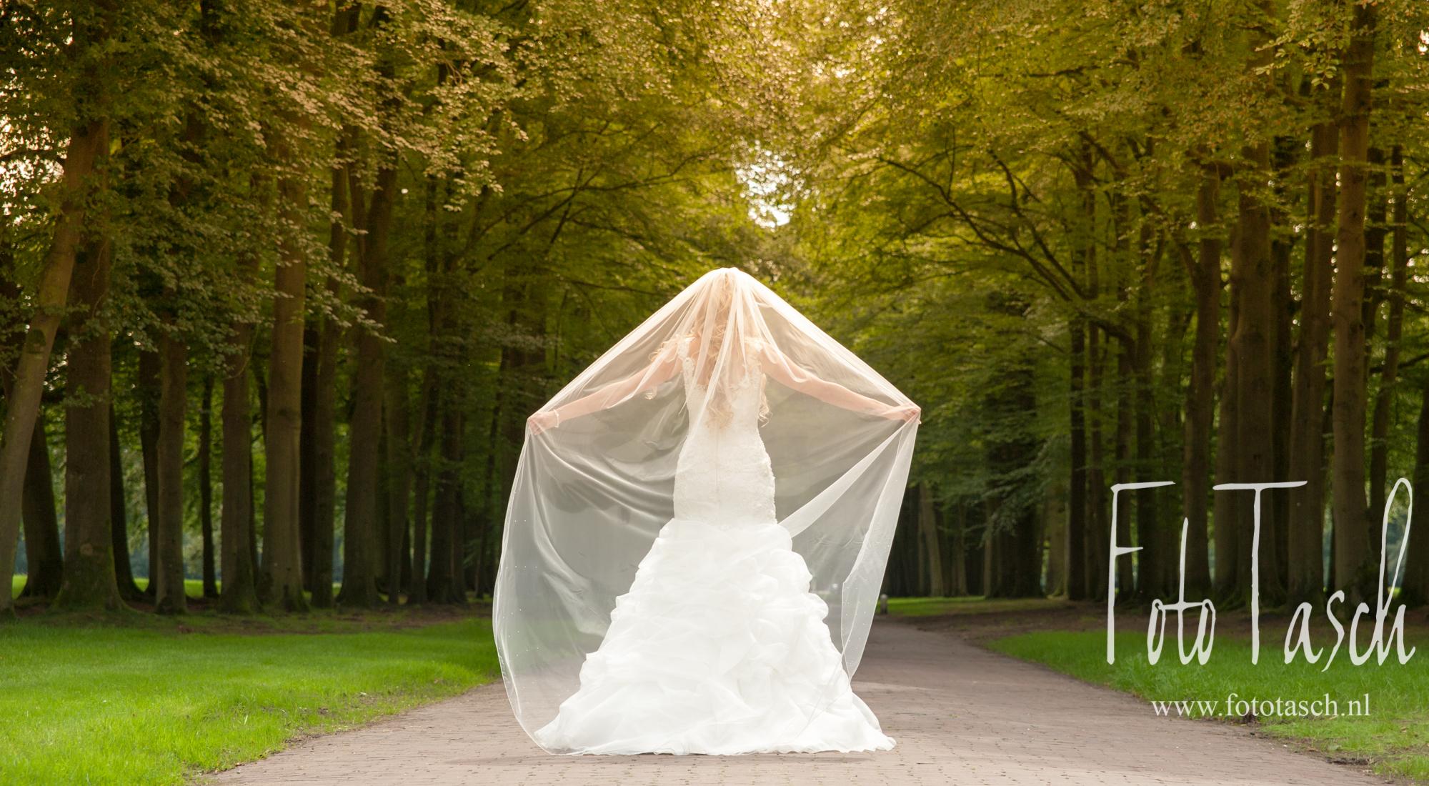 bruidspaar-bar-webbestanden-fototasch-362